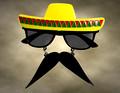 Photobooth Sunglasses